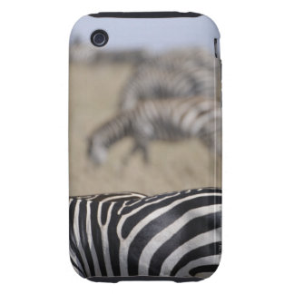 Herd of Zebras grazing, Masai Mara Game Reserve, Tough iPhone 3 Cover