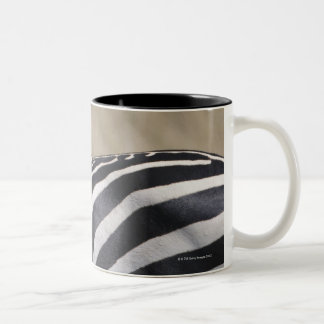 Herd of Zebras grazing, Masai Mara Game Reserve, Two-Tone Coffee Mug