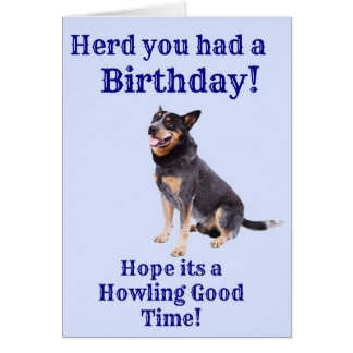 Herd you had a Birthday Card