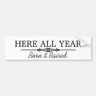 Here all year bumper sticker