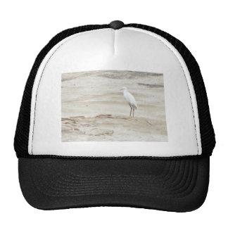 Here I Am Mesh Hats