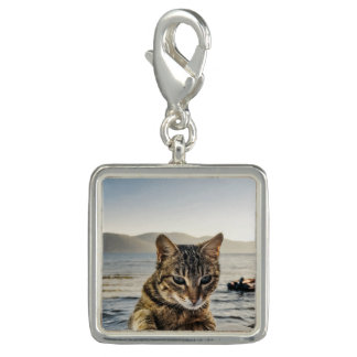 """""""Here I am"""" says the Cat Charm"""