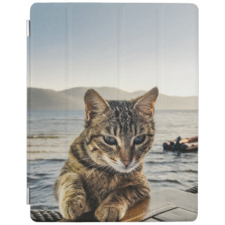"""Here I am"" says the Cat iPad Smart Cover"