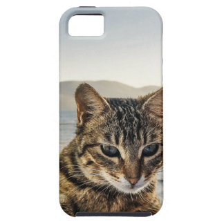 """Here I am"" says the Cat iPhone 5 Cover"