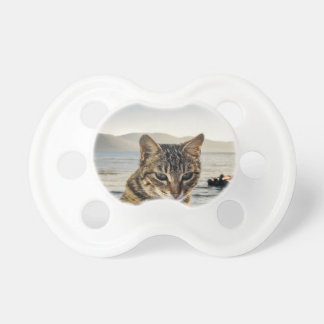 """""""Here I am"""" says the Cat Pacifier"""