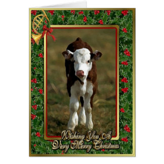 Hereford Calf Cow Blank Christmas Card