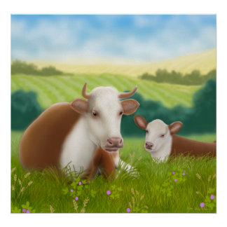 Hereford Cow and Her Calf Poster