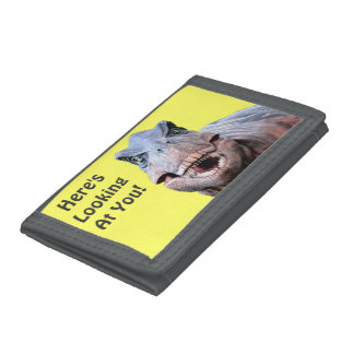 Here's Looking At You - T.rex Dinosaur Wallet