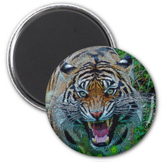 Here's Looking At You Tiger 2 Inch Round Magnet