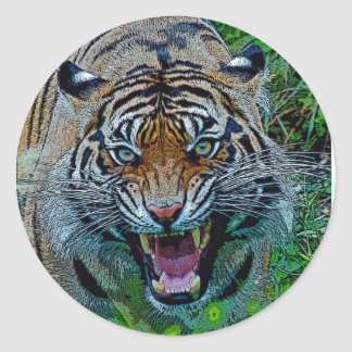 Here's Looking At You Tiger Round Sticker