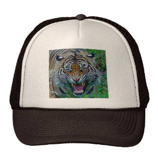 Here's Looking At You Tiger Trucker Hat