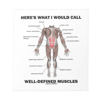 Here's What I Would Call Well-Defined Muscles Notepads
