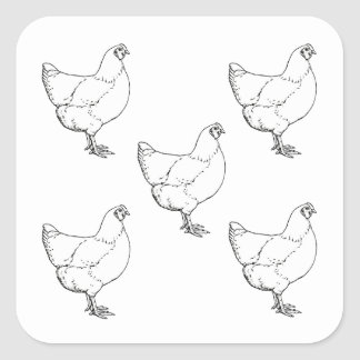 Heritage Breed Chickens Flock - 5 Hens Square Sticker