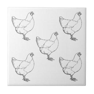 Heritage Breed Chickens Flock - 5 Hens Tile