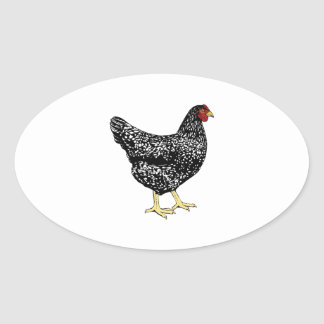 Heritage Breed Laying Hen - Barred Plymouth Rock Oval Sticker