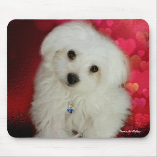 Hermes the Maltese Mouse Pad