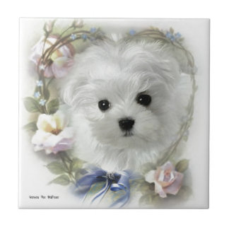 Hermes the Maltese Tile