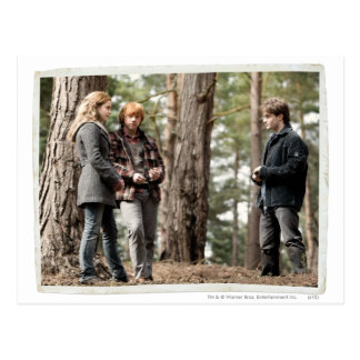 Hermione, Ron, and Harry 2 Postcard