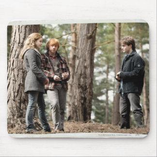 Hermione, Ron, et Harry 2 Tapis De Souris