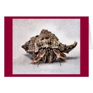 Hermit crab #1 card