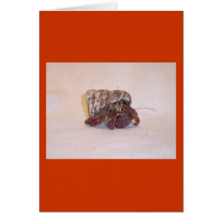 Hermit Crab #6 Card