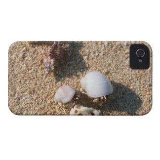 Hermit crab Case-Mate iPhone 4 cases