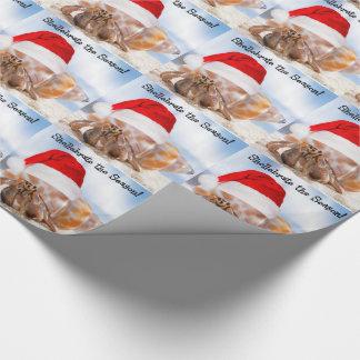 Hermit Crab Christmas