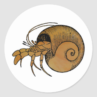 Hermit Crab Classic Round Sticker