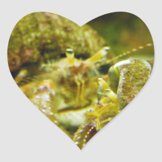 Hermit Crab Couple Heart Sticker