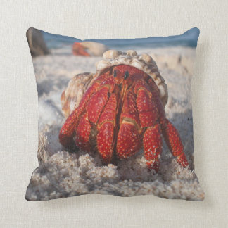 Hermit Crab on the Beach Throw Pillow