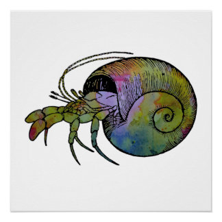 Hermit Crab Perfect Poster