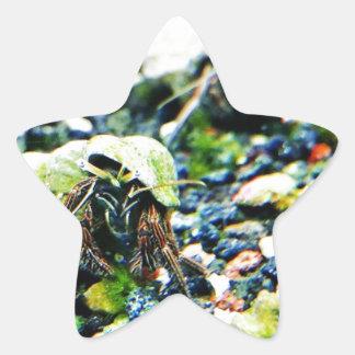 Hermit Crab Star Sticker