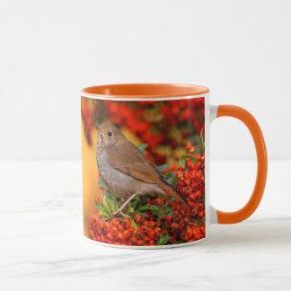 Hermit Thrush on the Scarlet Firethorn Mug
