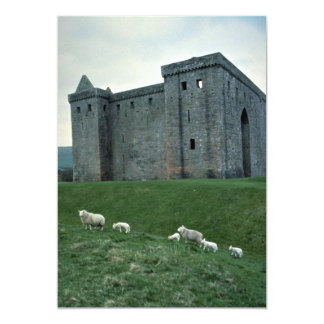 Hermitage Castle with sheep, Scotland Card