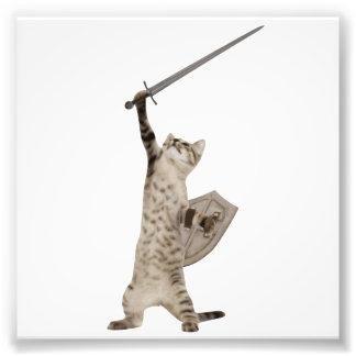 Heroic Warrior Knight Cat Photographic Print