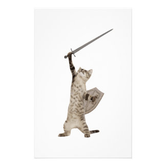 Heroic Warrior Knight Cat Stationery Design