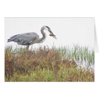 Heron Bird Wildlife Animals Wetlands Card
