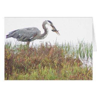Heron Birds Wildlife Animals Wetlands Card