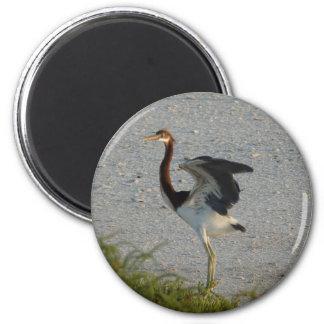Heron Chick 2 Inch Round Magnet