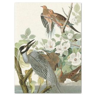 Heron & Dove Birds Audubon Flowers Tissue Paper