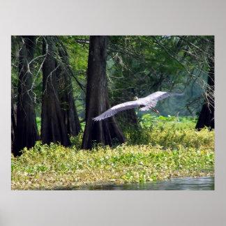 Heron Landing Poster