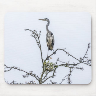 Heron on a tree mousepad