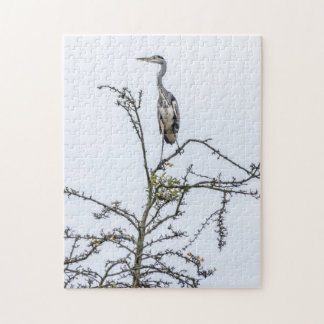 Heron on a tree photo puzzle