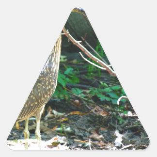heron triangle sticker