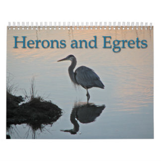 Herons and Egrets Calendar