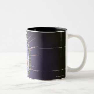 Herpes Virus Structure Two-Tone Coffee Mug