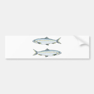 Herring Fish Sketch Bumper Sticker