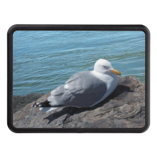Herring Gull on Rock Jetty Trailer Hitch Cover