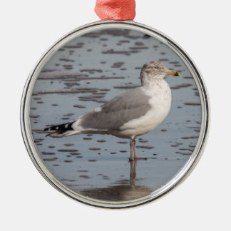 Herring Gull Silver-Colored Round Ornament