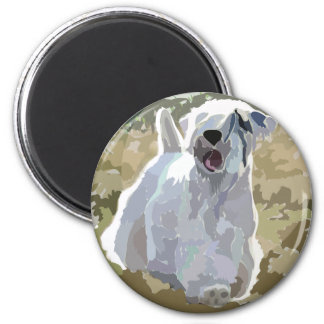 He's an Angel - Sealyham sunlit in field 2 Inch Round Magnet